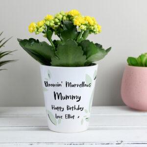 Engraved Plant Pots
